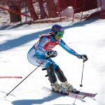 Ski  som  sport